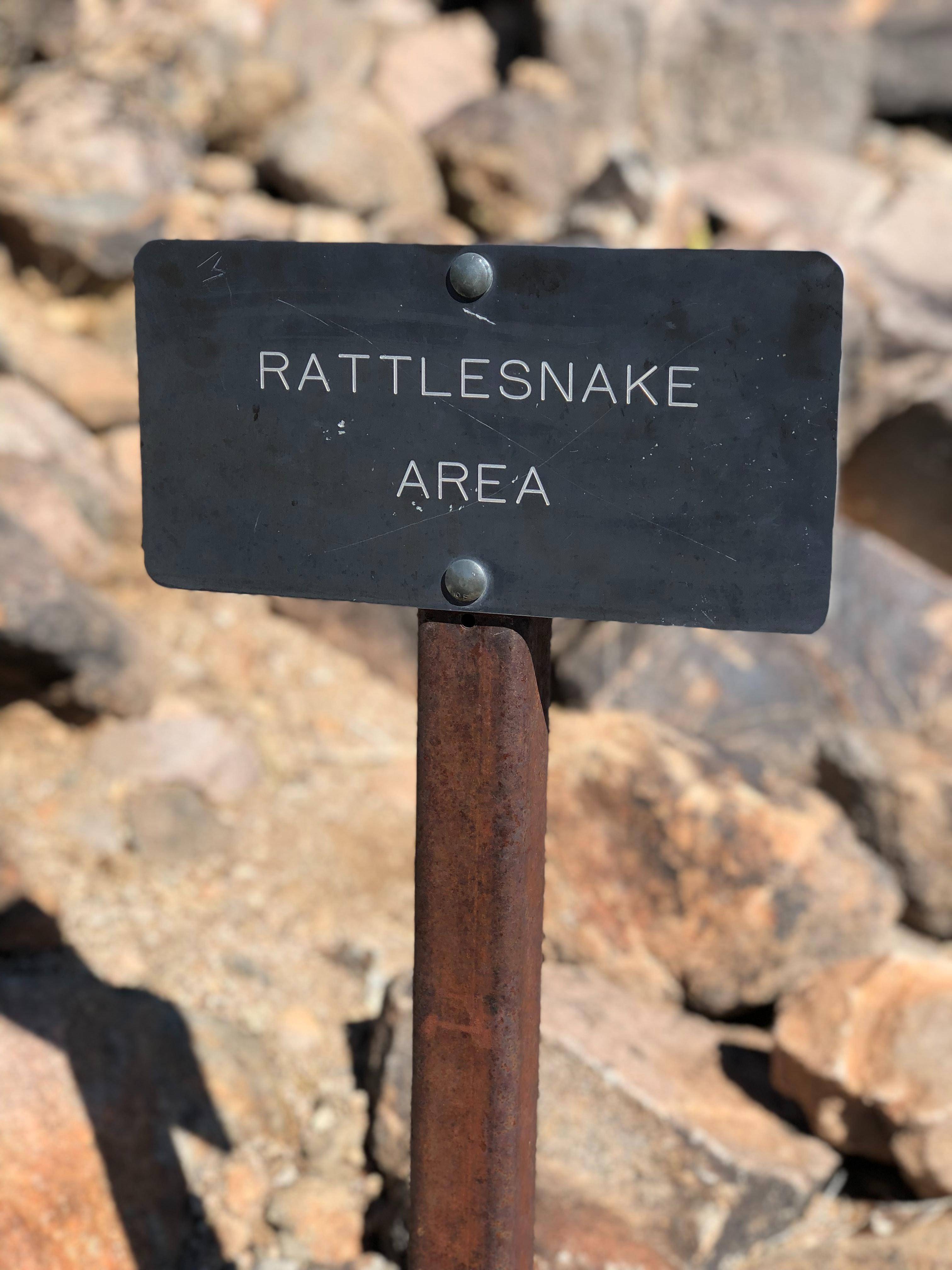 Identifying Venomous Snakes